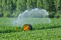 Watering in a corn field in proissans in perigord france Stock Photos