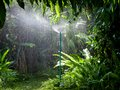 Watering in the garden with sprinkler Stock Photography