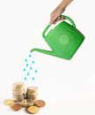 Watering money concept female hand holding a plastic green can Royalty Free Stock Photos