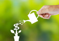 Watering paper plant that produces money a Royalty Free Stock Photos