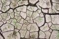 Waterless cracked soil Royalty Free Stock Photo