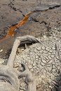 Waterless lake Royalty Free Stock Photo