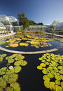 Waterlily pond and greenhouse in front of the green house at the new york botanical garden Stock Image