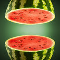 Watermelon cross sections on green gradient background Stock Image