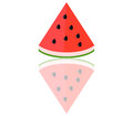 Watermelon illustrated