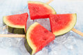 Watermelon popsicle in ice cubes Royalty Free Stock Photo