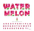 Watermelon summer bright font. Cartoon decorative alphabet. Glossy letters and numbers isolated on white. For package