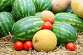 Watermelon,tomatoes and cantaloupe Royalty Free Stock Photo