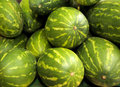 Watermelons Royalty Free Stock Photo