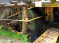 Watermill oblazy slovakia wheel in Royalty Free Stock Photography