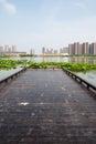 Waterscape platform this photo was taken in lotus lake park nanjing city china photo taken on jul th Stock Image