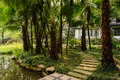 Waterside curving flagstone path in shade of plam trees before c pavement the palm chinese traditional building on sunny summer Royalty Free Stock Photos