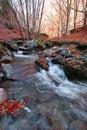 Waterstream Stock Photo