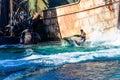 Waterworld at Universal Studios Royalty Free Stock Photo