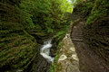 Watkins Glen Beauty Stock Photography