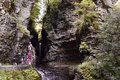 Rock formations allow water to flow and visitors to walk the trails at Watkins Glen, NY State Park
