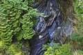 A stream finds a narrow cavity in the gorge at Watkins Glen, NY State Park