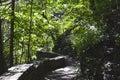 Rock pathways line throughout Watkins Glen, NY State Park