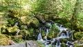 Watson falls oregon series of cascades at the base of s one of the highest waterfalls in it plunges feet to its moss Stock Photo