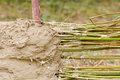 Wattle and daub building method a traditional Royalty Free Stock Photo