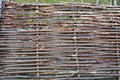 Wattle fence of dry twigs Stock Image