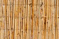 Wattle fence texture for your design Stock Photos