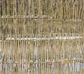 Wattle fence wood background Royalty Free Stock Photo