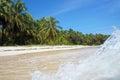 Wave crashing on a tropical beach sandy with beautiful vegetation Stock Photo