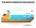 Wave formation mechanism waves are formed by wind blowing along the waters surface waves of water do not move horizontally they Royalty Free Stock Images