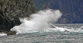Wave hitting cliff walls in Middle Cove Newfoundland Royalty Free Stock Photo