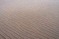 Wave patterns on sand in shallow water on beach in winter Royalty Free Stock Photo