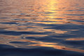 Wave On Sea Surface At Sunset