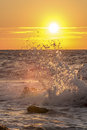 Wave splash at sunset Royalty Free Stock Photos