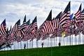 Waves Of Flags Display At Pepp...