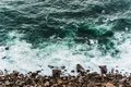 Waves hitting the sea shore Royalty Free Stock Photo