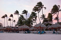 Waving palmtrees on the beach at sunset Royalty Free Stock Photo