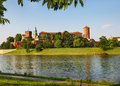 Wawel view towards to framed by leaves Stock Images