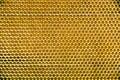 Wax honeycomb Royalty Free Stock Photo