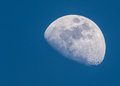 Waxing Gibbous Moon Royalty Free Stock Photo