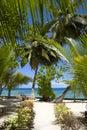 Way to beach Royalty Free Stock Photo