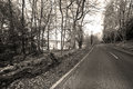 Way to the lake road near loch lomond in sepia picture was taken in early spring scotland uk Royalty Free Stock Photography