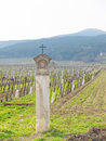 Wayside shrine vineyard lower austria Royalty Free Stock Image