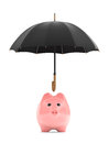 Wealth protection concept piggy bank under umbrella on a white background Stock Image