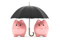 Wealth protection concept piggy banks under umbrella on a white background Stock Image