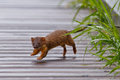 Weasel on the go long tailed across a wet boardwalk Royalty Free Stock Photo