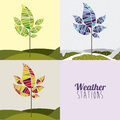 Weather design over white background vector illustration Stock Photography