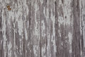 Weathered Barn Wood Royalty Free Stock Photo