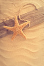 Weathered board with starfish in sand Royalty Free Stock Photo