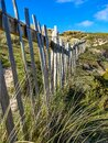 A weathered dune fence vanishing in to the distance Royalty Free Stock Photo