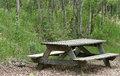 Weathered Picnic Table in a Forest Royalty Free Stock Photography